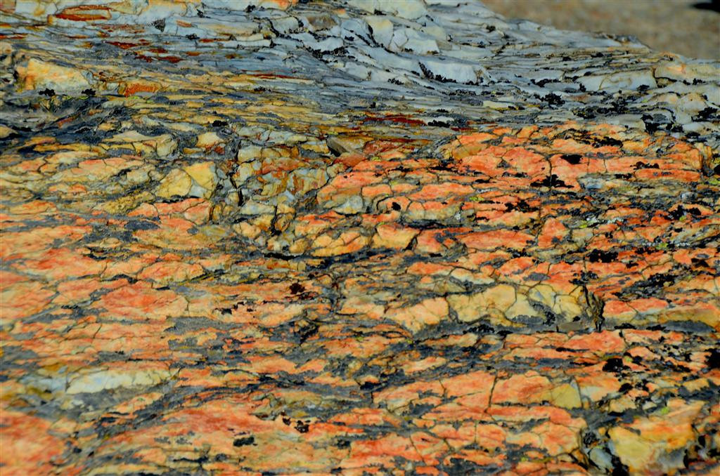 August 23<br /> <br /> The shale outcroppings at Sun Point are very colorful.