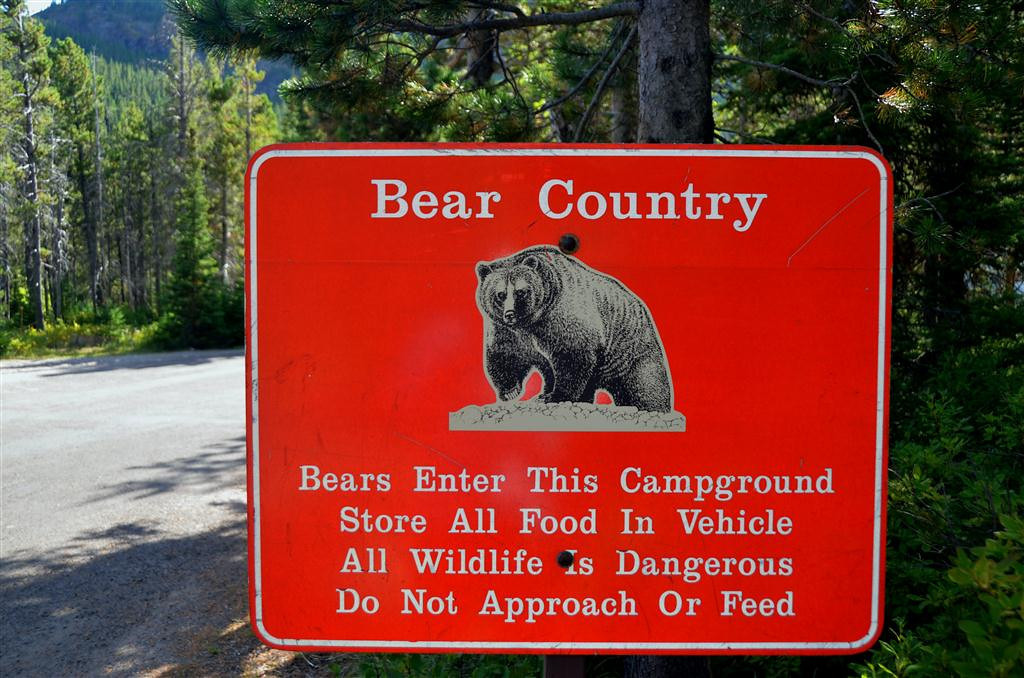September 1<br /> <br /> Like all campgrounds in Glacier, bears can be expected to visit the campgrounds. A Ranger advises me that they are particularly alert to campers dumping food residue.