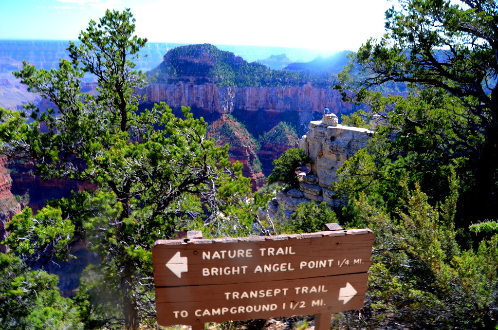 Bright Angel Point Trail is a wonderfully engineered trail that keeps you out of the sun but provides spectacular views.<br /> <br /> No trip to the North Rim is complete without a visit to this trail.