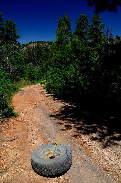 I explore some 4 wheel drive side roads and came upon this wheel and tire which apparently became unlashed from some vehicle. It must of been an omen because later that day I had a flat tire on my truck. I was warned about the rough roads in the Kaibab and they were right.