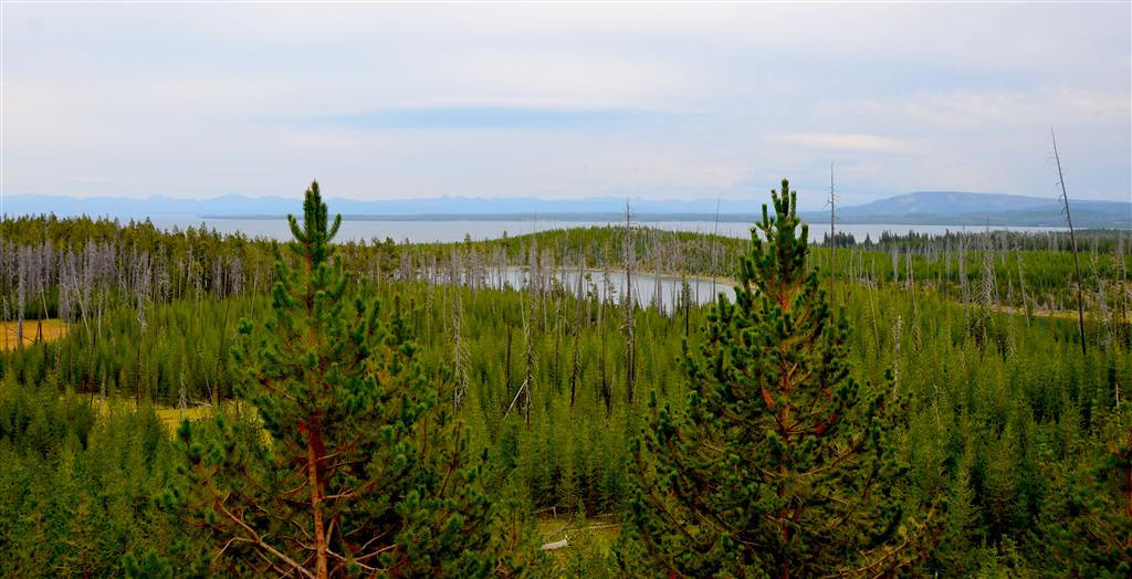 September 6 <br /> <br /> Yellowstone Lake is huge.  This picture captures only a small portion of it.<br /> <br /> Yellowstone Lake is the largest freshwater lake above 7,000 feet, average depth is 139 feet.