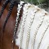 Reserve champion gelding, Dakota, owned by Jordyn Hensley, has braids that match his owner's.