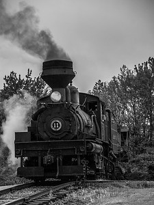 Cass Scenic Railroad 2018