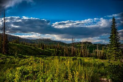 Skyline Meadows