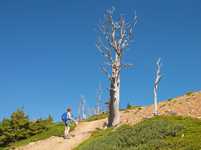 In contrast to Saturday- bluebird skies for our Sunday hike  to Table Mountain.