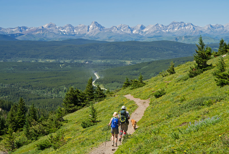 Below the steep gully, the trail traverses some pleasant meadows with views  of the distant divide.