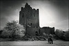 Clonony castle, Co. Offaly, Ireland