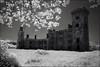 Wilton castle,Co. Wexford, Ireland