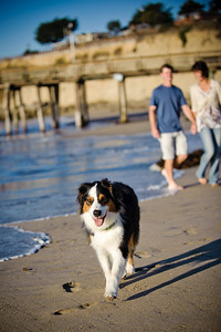7538-d700_Amy_and_Michael_Savage_Capitola_Beach_Portrait_Photography