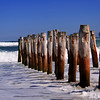 Wooden Poles On St Clair Beach