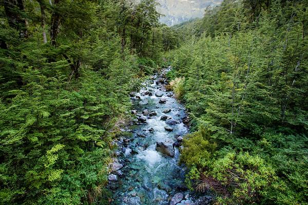 Routeburn Track, Mount Aspiring National Park.