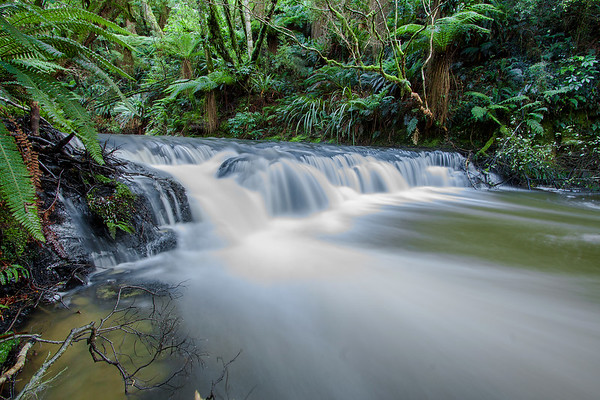 Purakanui River, The Catlins