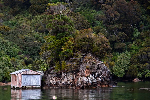 Boat Shed In The Bush