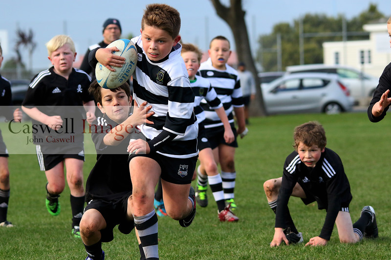 Junior Rugby Matches