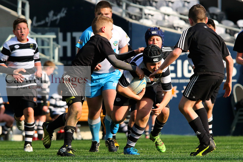 Dunedin Junior Rugby Under 11 Final.