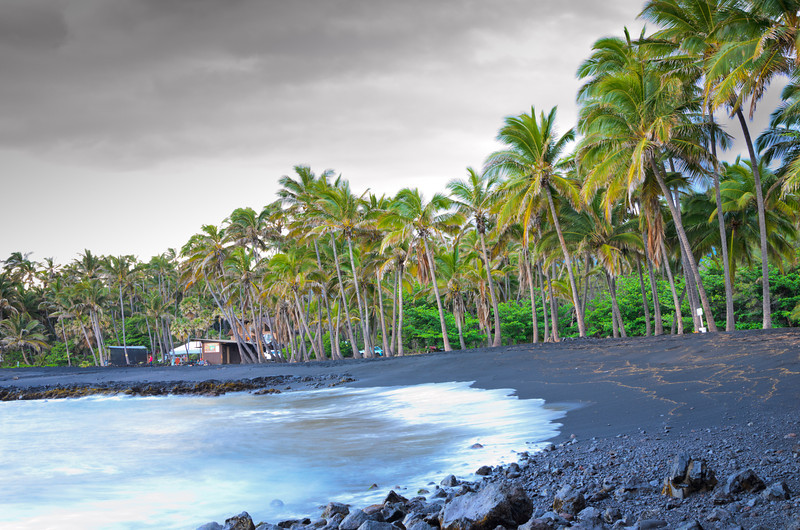 Black Sand Beach Palm Trees