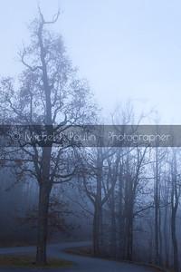 Descended Fog