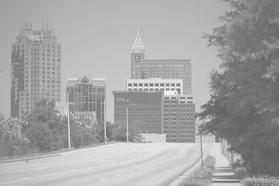 raleigh_skylinebw_large