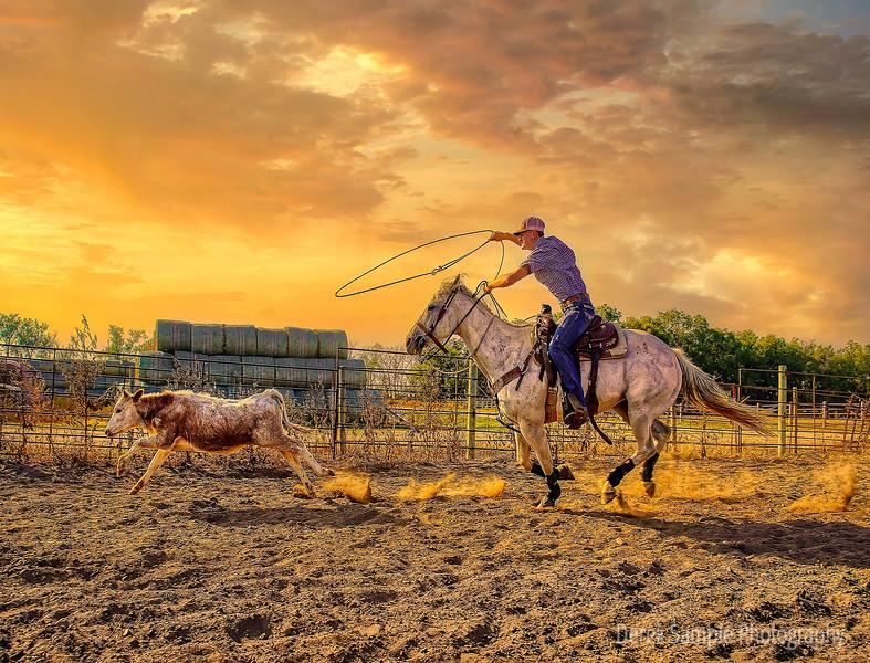 Sunset Cowboy in North Dakota