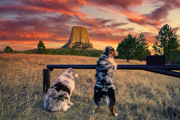 an Evening at Devils Tower