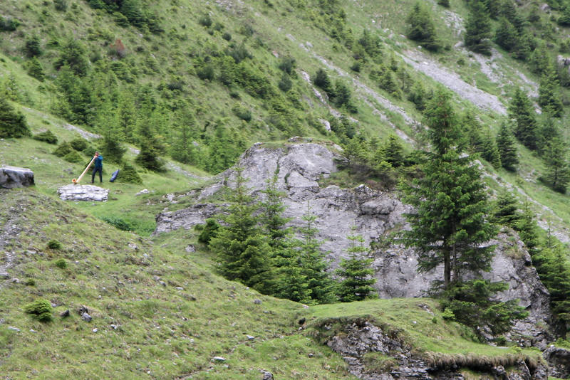 Alpenhorn em Unterboden