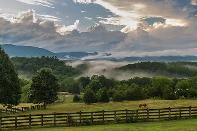 Catawba Glen Farm Landscapes, Wild Life, & Farm Life
