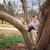 2018 April 22  Pete Climbing a tree.  Lilac Park, Lombard, IL