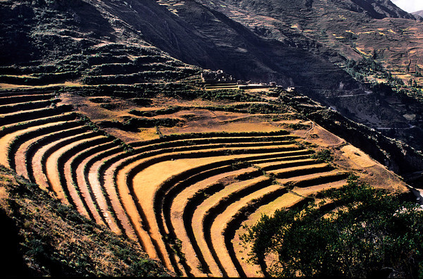 "<p><font size=""4"" face=""Trajan Pro"">Pisac Cusco</font></p>"