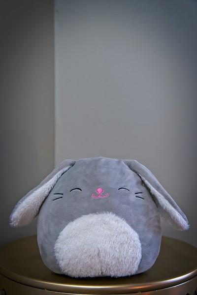 Fluffy hiding in the corner