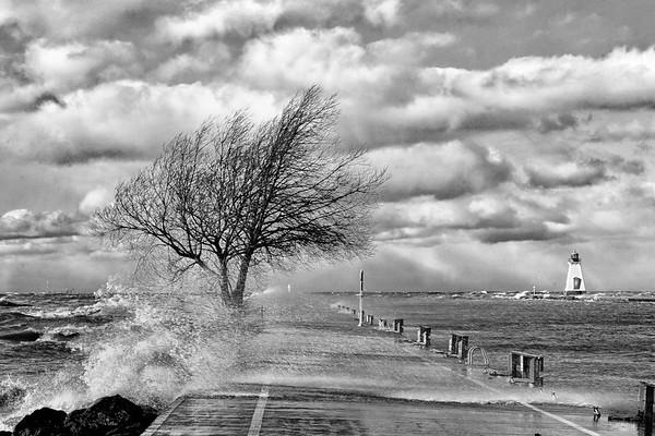 Port Pier - Black & White 12 x 8
