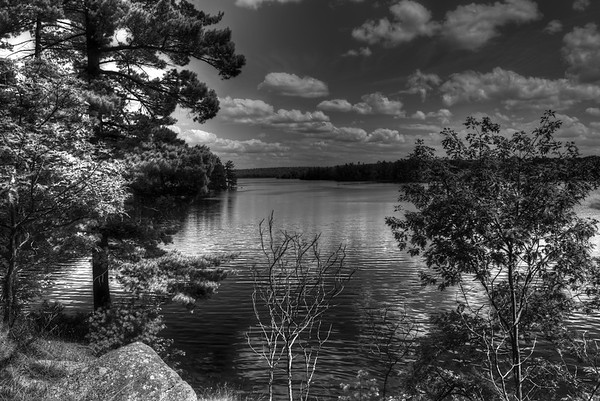B&W from the campsite