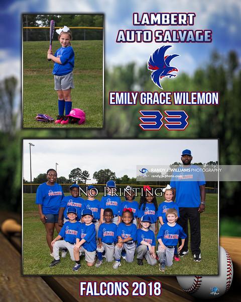 Emily Grace Wilemon - Memory Mate