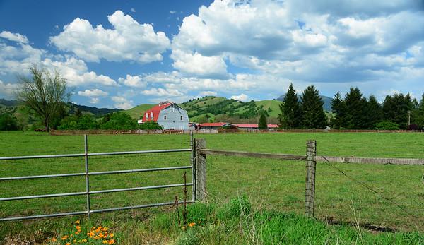 Vast Farm in Oregon along Umpqua