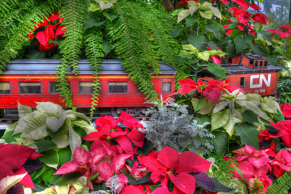 CN Train and passengers with flowers