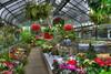 Floral Garden in Niagara Falls