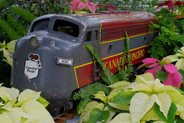 CP Train