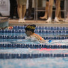 Swim StateChampionships-21