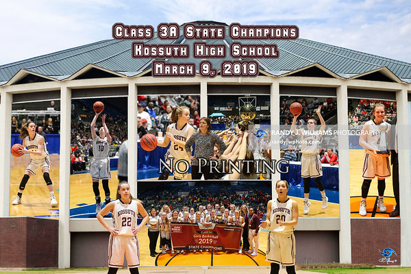 State Championship Posters