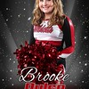 Brooke Pulse
