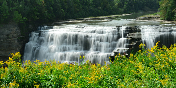 Middle Falls and flowers