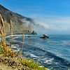 Big Sur Coastline with fog and Pampass Grass
