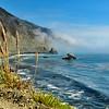 Big Sur Coastline with fog and Pampass Grass