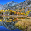 Reflections of Lundy Canyon