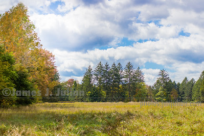Open Space in Early Fall