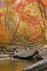 2010-10-24_White Oak Canyon_Zwit_0011