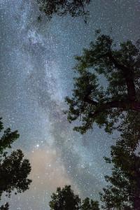 2014-08-25_TR Natl Park-South Unit_Zwit_0233