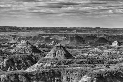 2014-08-25_TR Natl Park-South Unit_Zwit_0052-edit