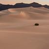 2015-04-07_Death Valley_Zwit_0100_Ext Edit