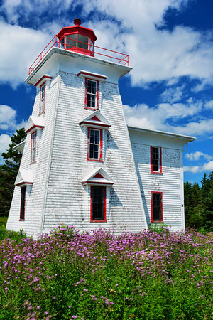 Blockhouse Lighthouse with purple wildflowers