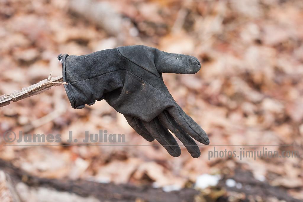 Lost Winter Glove